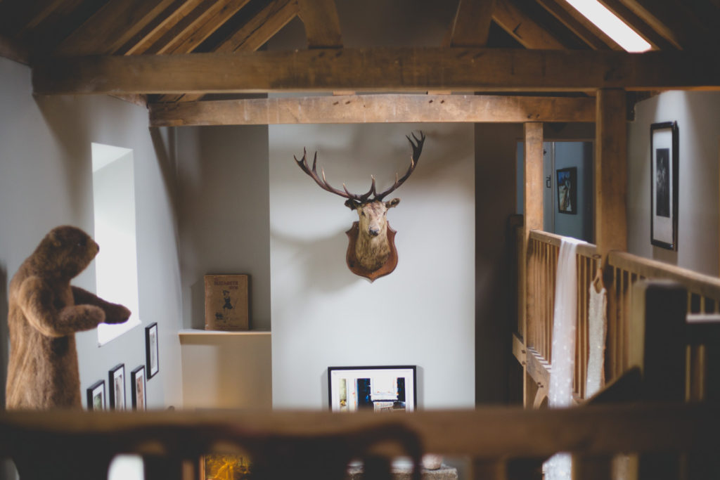 Mounted stags head hanging beneath high wooden rafter ceiling