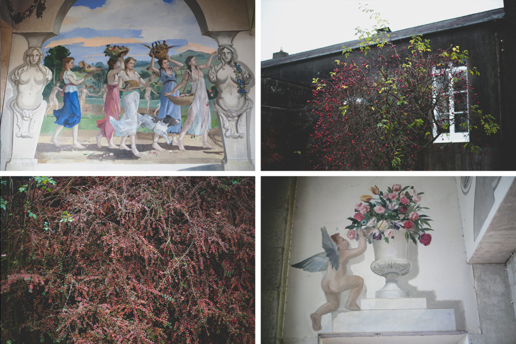 Red berries trees and painted murals at Lough Crew Co Meath