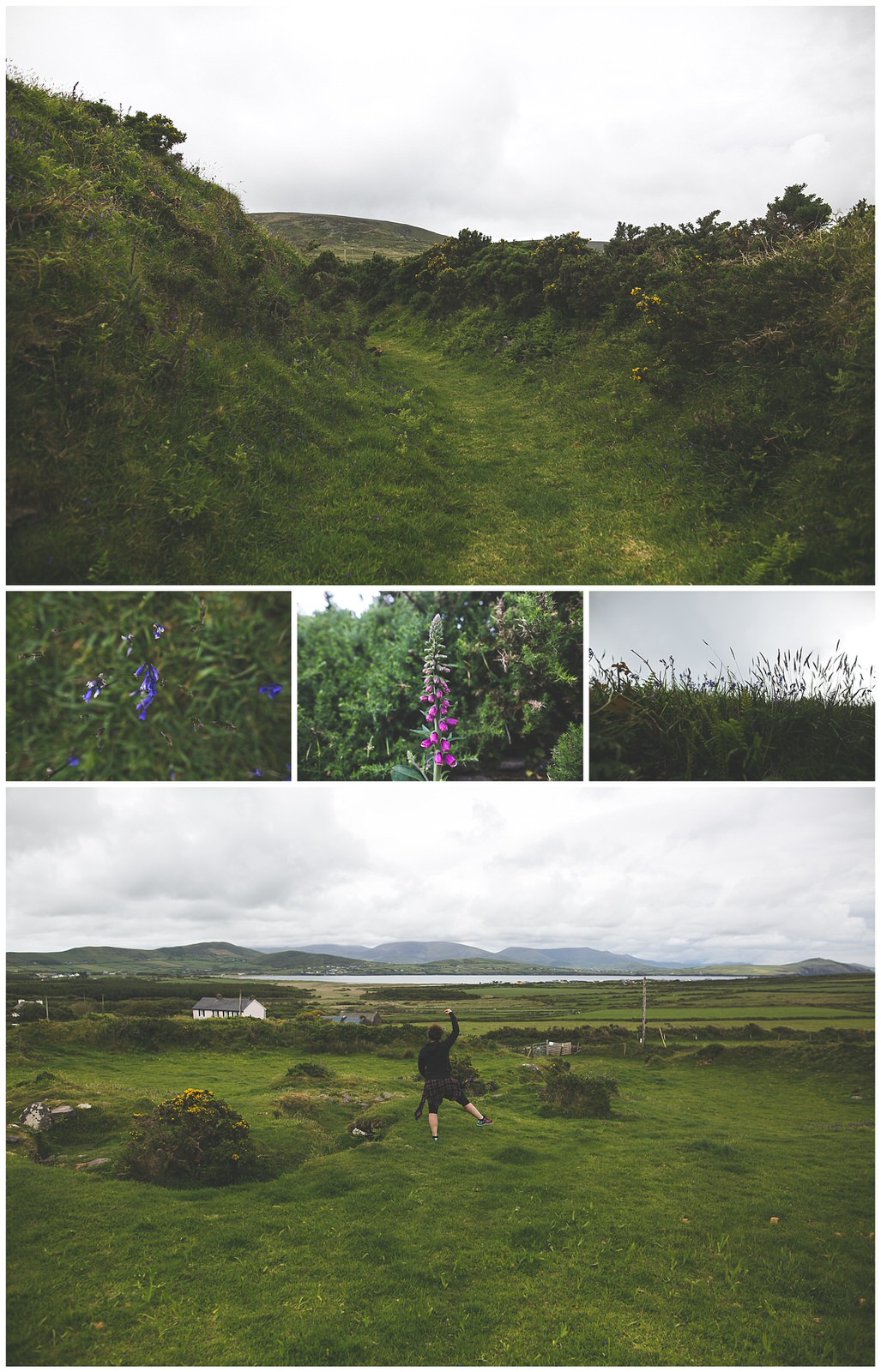Details of a circular green Irish Ringfort on the dingle peninsula