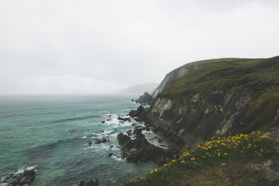 Adventures in Dingle - Wild Things Road Trip !