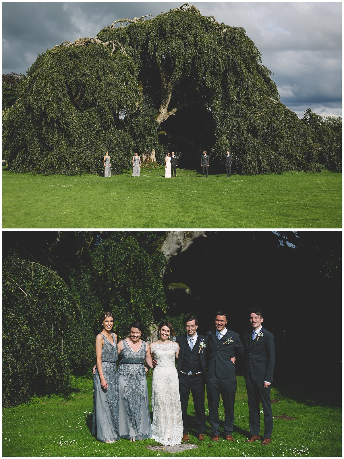 Bridal party portraits under the tree at Bellinter House