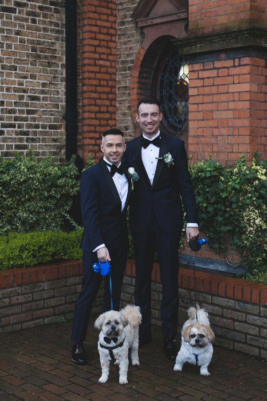 Wedding portraits with two grooms & their adorable dogs at Thomas Prior Hall Ballsbridge